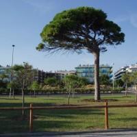 Pobřeží Cambrils-Salou