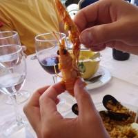 Mořské plody v restauraci v Deltě Ebra