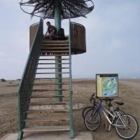 Vyhlídka pro klidné pozorování ptáků v Deltě řeky Ebro