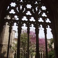 Lleida - katedrála