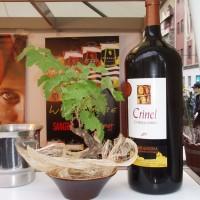 Láhev vína a rostlinka vína