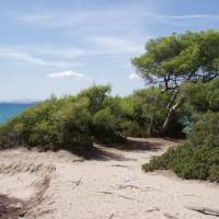 Cesta podél pobřeží