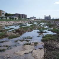 Řeka Francolí s vodou