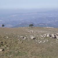 Na stolové hoře Mola de Colldejou